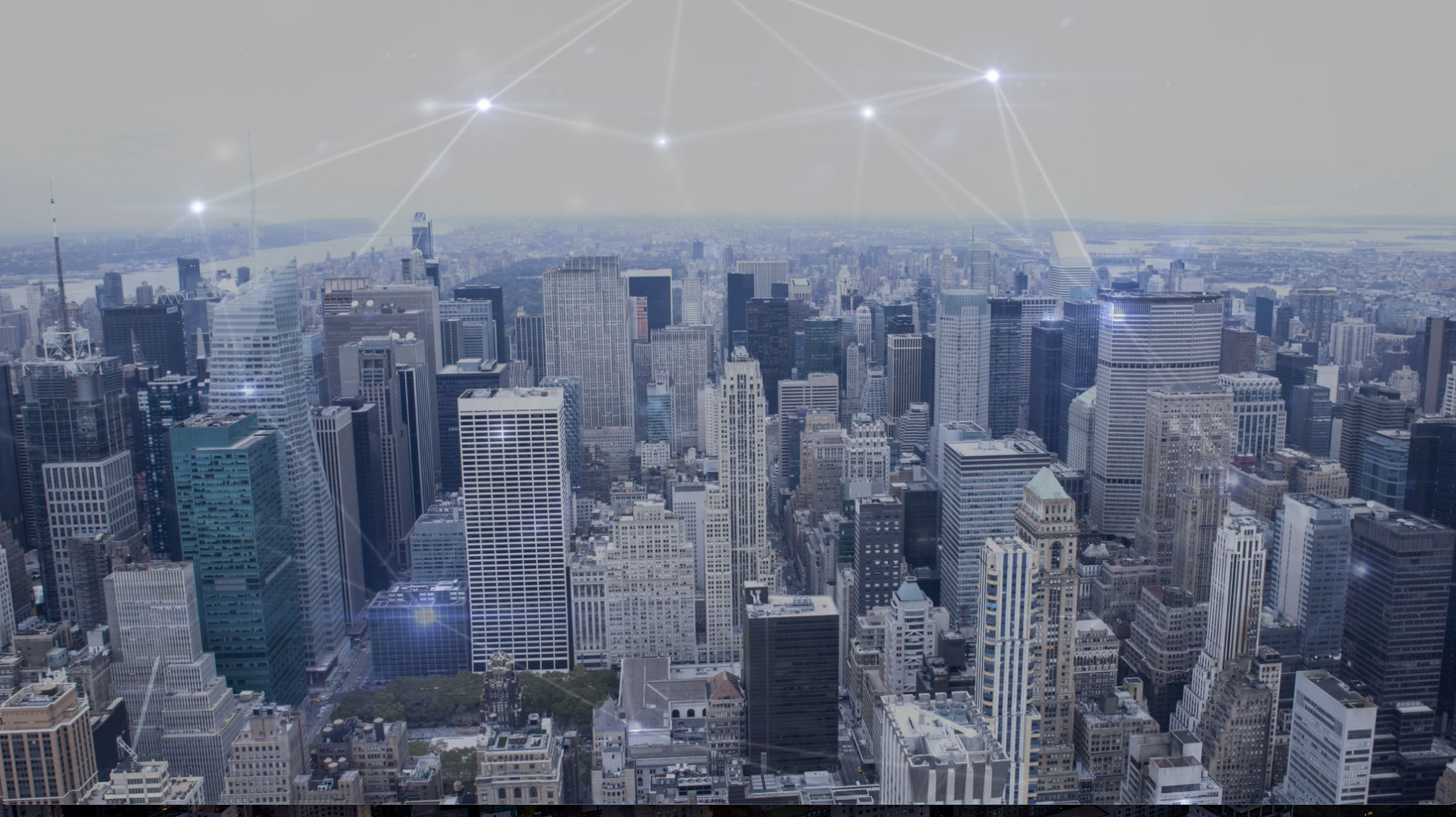 Best Network 2021 City